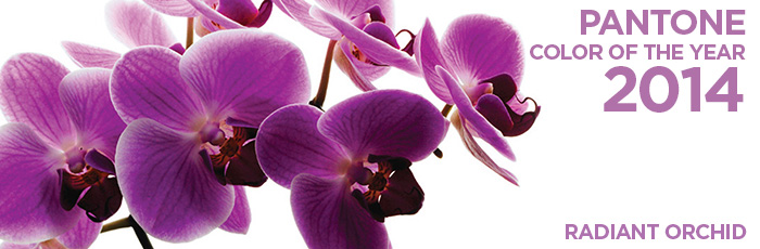 Radiant Orchid 2014